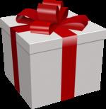 Mandatory Gift Fund $150 USD