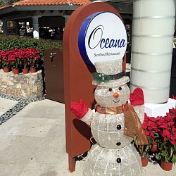 Christmas cheers from Dreams Los Cabos