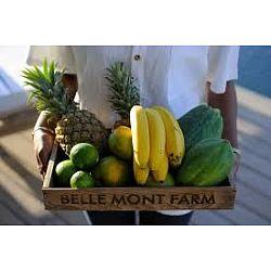 Farm to Table literally
