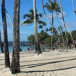 Beach at the Family Resort Hilton La Romana